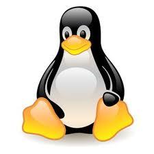 icono linux